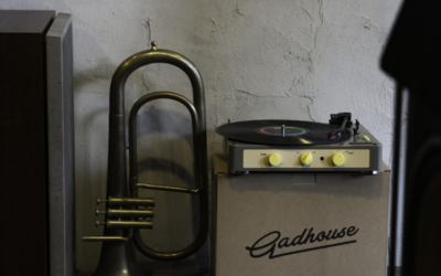 Review: Gadhouse Brad Vintage Record Player
